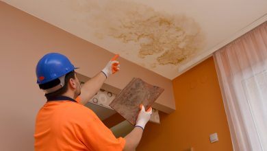 signs you have mold in your house