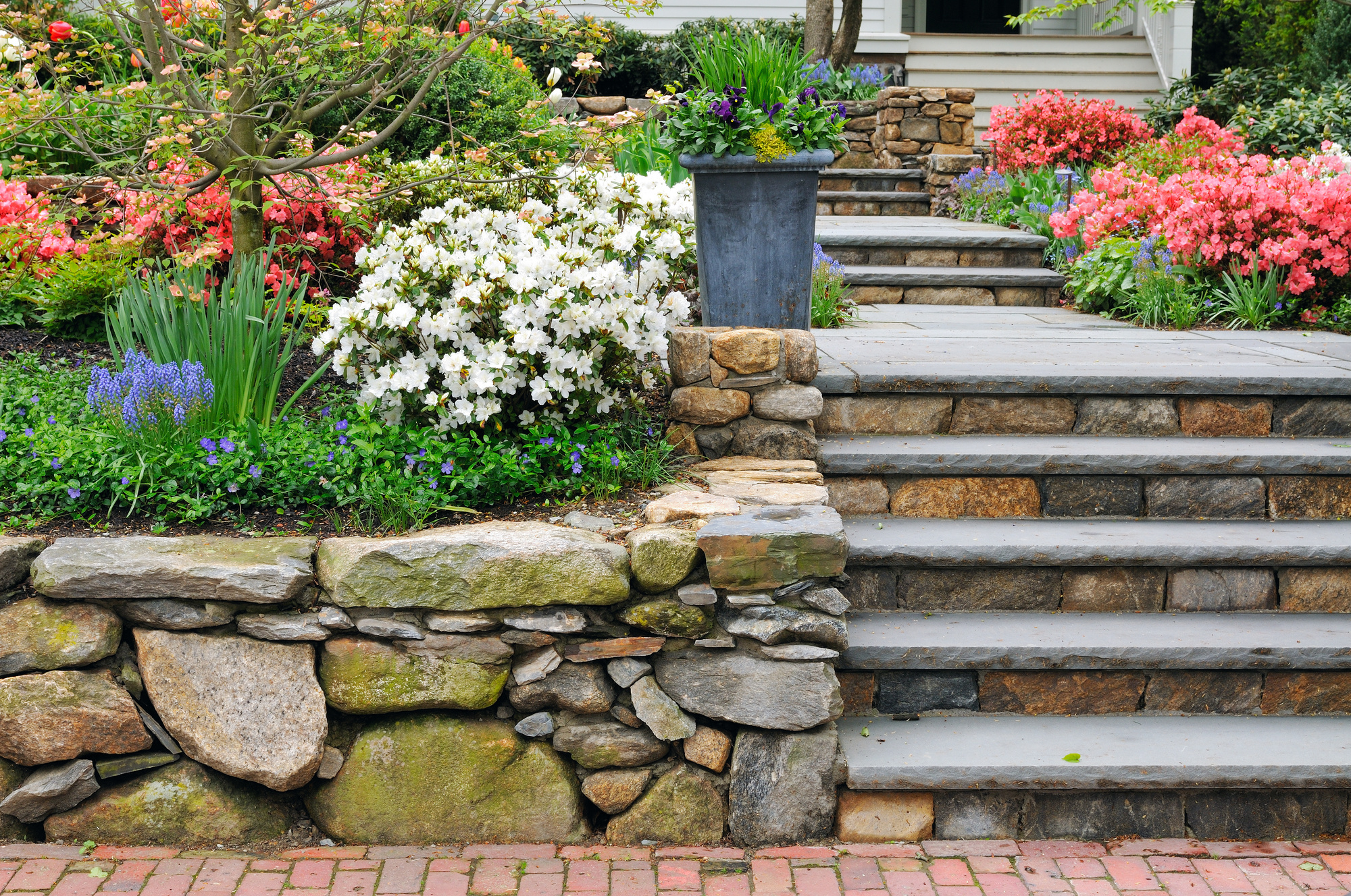 how to start landscaping from scratch